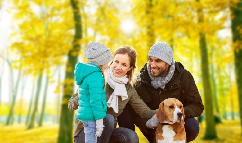 Are Beagles A Good Family Dog?