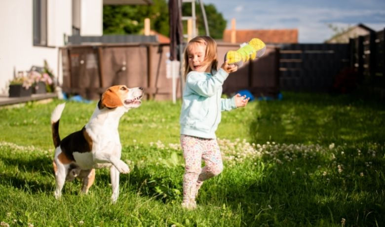 Are Beagles Good With Kids?