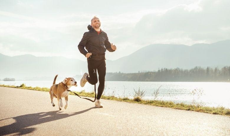 How Fast Can Beagles Run?